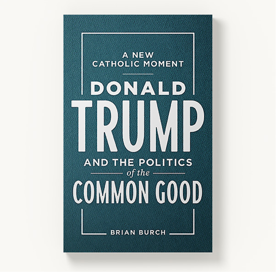 Every Catholic Voter Needs This Book